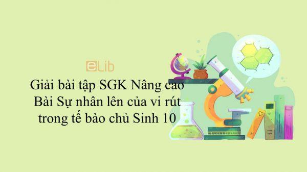 Giải bài tập SGK Sinh học 10 Nâng Cao Bài 44: Sự nhân lên của vi rút trong tế bào chủ