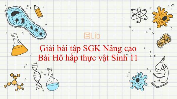 Giải bài tập SGK Sinh học 11 Nâng Cao Bài 11: Hô hấp thực vật
