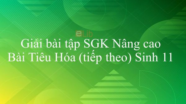 Giải bài tập SGK Sinh học 11 Nâng Cao Bài 16: Tiêu Hóa (tiếp theo)