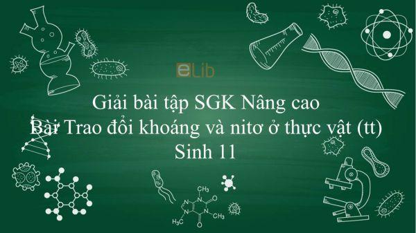 Giải bài tập SGK Sinh học 11 Nâng Cao Bài 4: Trao đổi khoáng và nitơ ở thực vật (tiếp theo)