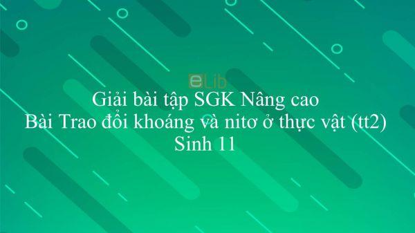 Giải bài tập SGK Sinh học 11 Nâng Cao Bài 5: Trao đổi khoáng và nitơ ở thực vật (tiếp theo)