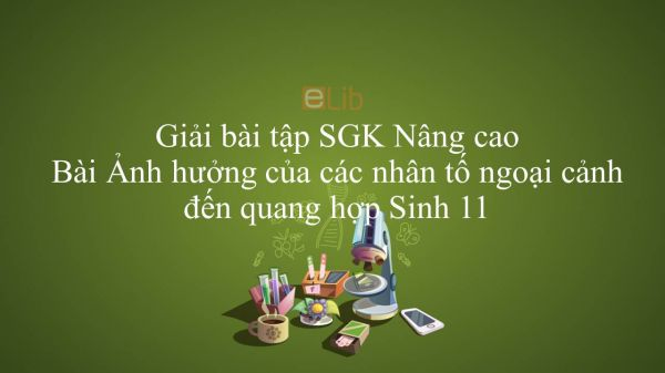 Giải bài tập SGK Sinh học 11 Nâng Cao Bài 9: Ảnh hưởng của các nhân tố ngoại cảnh đến quang hợp