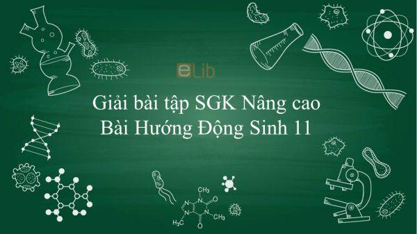 Giải bài tập SGK Sinh học 11 Nâng Cao Bài 23: Hướng động
