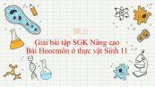 Giải bài tập SGK Sinh học 11 Nâng Cao Bài 35: Hoocmôn ở thực vật