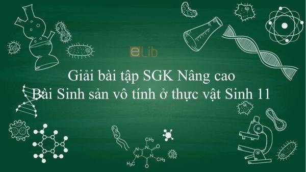Giải bài tập SGK Sinh học 11 Nâng Cao Bài 41: Sinh sản vô tính ở thực vật