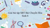 Giải bài tập SBT Sinh học 8 Bài 32: Chuyển Hóa