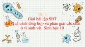 Giải bài tập SBT Sinh học 10 Bài 23: Quá trình tổng hợp và phân giải các chất ở vi sinh vật