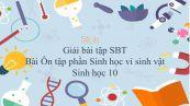Giải bài tập SBT Sinh học 10 Bài 33: Ôn tập phần Sinh học vi sinh vật