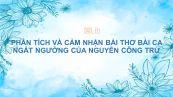 Phân tích và cảm nhận về bài thơ Bài ca ngất ngưởng của Nguyễn Công Trứ
