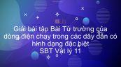 Giải bài tập SBT Vật Lí 11 Bài 21: Từ trường của dòng điện chạy trong các dây dẫn có hình dạng đặc biệt