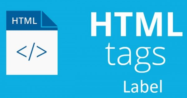 Thẻ Label trong HTML