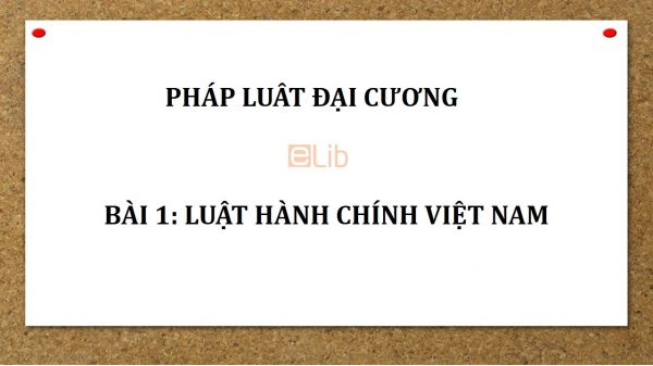 Bài 1: Luật hành chính Việt Nam