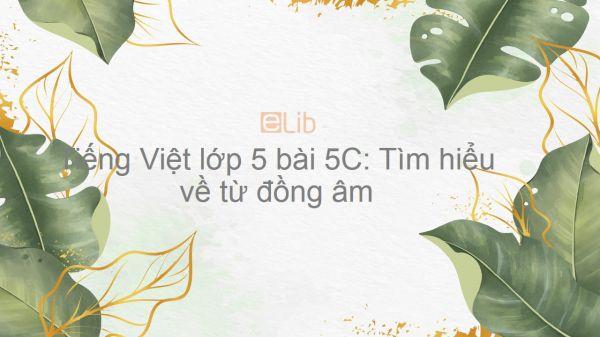 Tiếng Việt lớp 5 bài 5C: Tìm hiểu về từ đồng âm