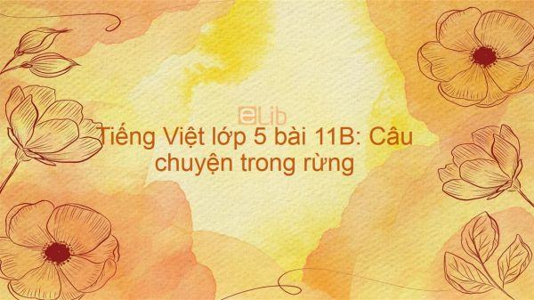 Tiếng Việt lớp 5 bài 11B: Câu chuyện trong rừng