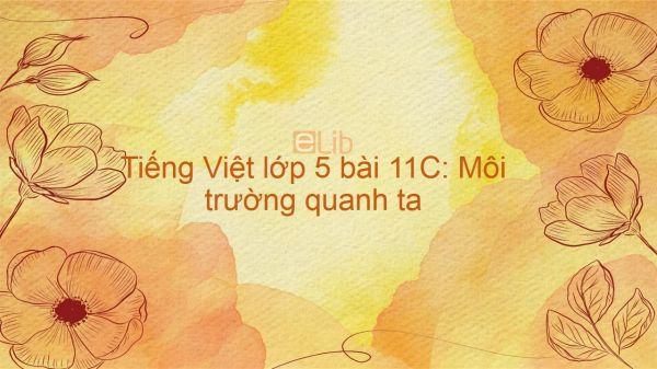 Tiếng Việt lớp 5 bài 11C: Môi trường quanh ta
