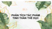 Phân tích tác phẩm Tinh thần thể dục của Nguyễn Công Hoan
