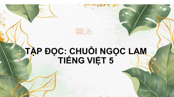 Tập đọc: Chuỗi ngọc lam Tiếng Việt 5