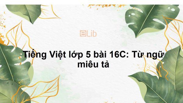 Tiếng Việt lớp 5 bài 16C: Từ ngữ miêu tả