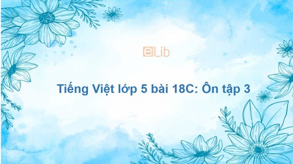 Tiếng Việt lớp 5 bài 18C: Ôn tập 3