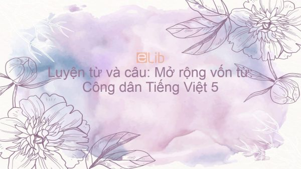Luyện từ và câu: Mở rộng vốn từ: Công dân Tiếng Việt 5