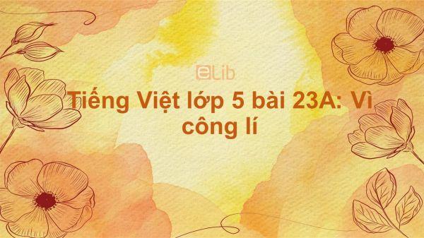 Tiếng Việt lớp 5 bài 23A: Vì công lí