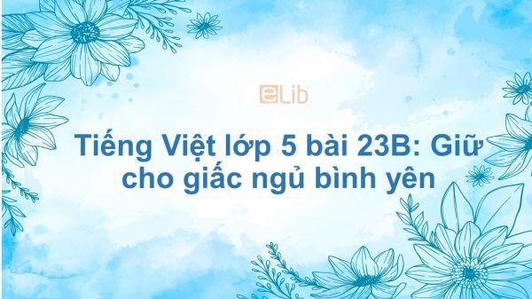Tiếng Việt lớp 5 bài 23B: Giữ cho giấc ngủ bình yên