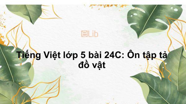 Tiếng Việt lớp 5 bài 24C: Ôn tập tả đồ vật