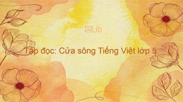 Tập đọc: Cửa sông Tiếng Việt lớp 5