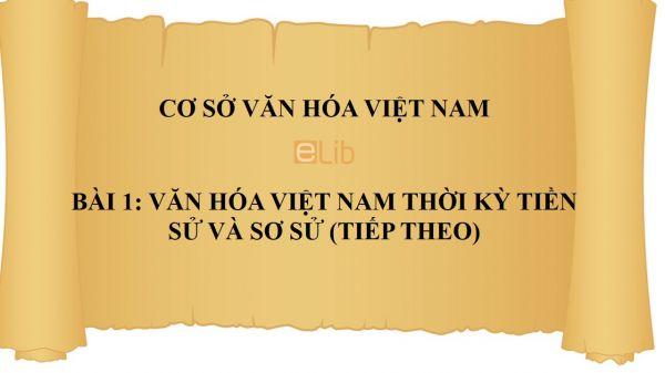 Bài 1: Văn hóa Việt Nam thời kỳ tiền sử và sơ sử (tiếp theo)