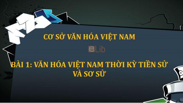Bài 1: Văn hóa Việt Nam thời kỳ tiền sử và sơ sử