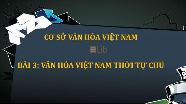 Bài 3: Văn hóa Việt Nam thời tự chủ