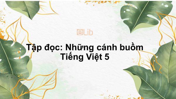 Tập đọc: Những cánh buồm Tiếng Việt 5