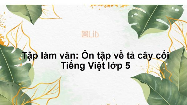 Tập làm văn: Ôn tập về tả cây cối Tiếng Việt lớp 5