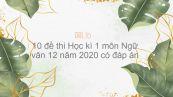 10 đề thi Học kì 1 môn Ngữ văn 12 năm 2020 có đáp án