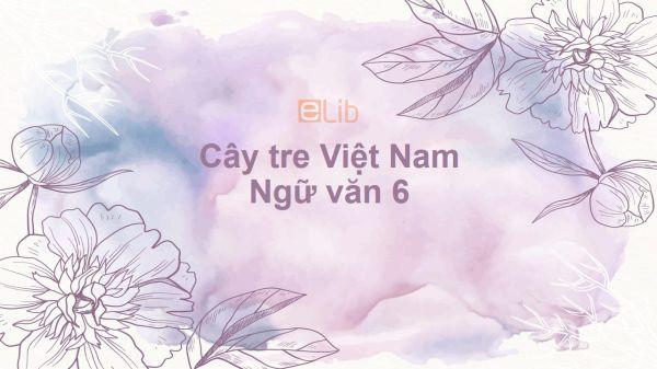 Cây tre Việt Nam Ngữ văn 6