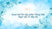 Soạn bài Ôn tập phần Tiếng Việt Ngữ văn 11 đầy đủ