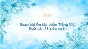 Soạn bài Ôn tập phần Tiếng Việt Ngữ văn 11 siêu ngắn