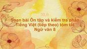 Soạn bài Ôn tập và kiểm tra phần Tiếng Việt (tiếp theo) Ngữ văn 8 tóm tắt