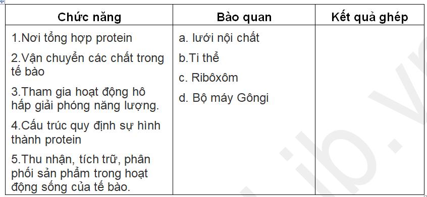 Bảng 3-2. Các bào quan và chức năng của chúng