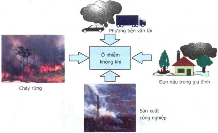 Hình 22.1 Một số hình ảnh gây ô nhiễm môi trường