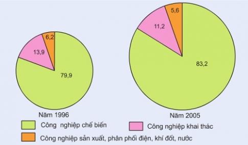 Biểu đồ cơ cấu ngành công nghiệp năm 1996 và năm 2005