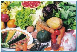 Các loại thực phẩm