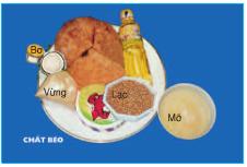 Nguồn cung cấp chất béo