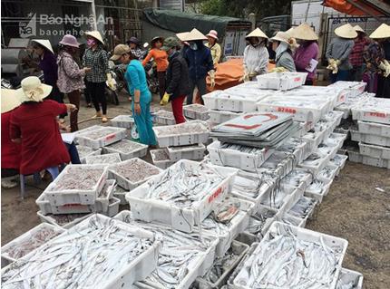 Thu nhập của người dân ven biển thông qua đánh bắt cá