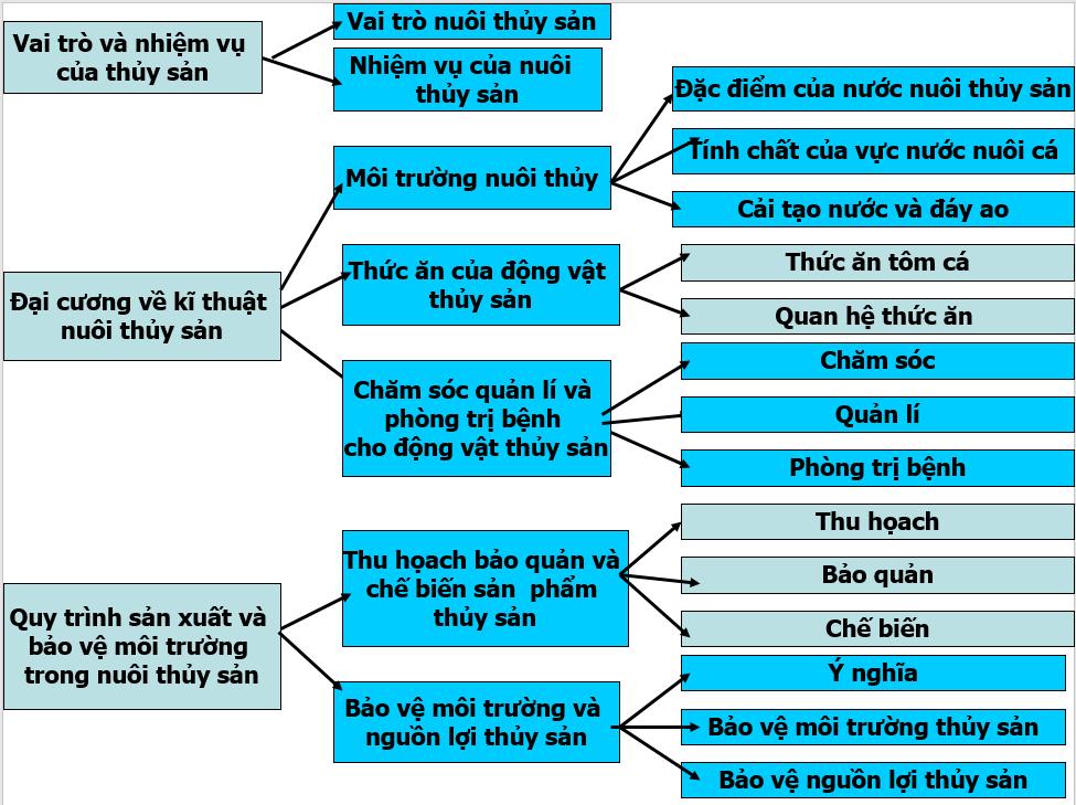Hệ thống hóa kiến thức phần IV: Thủy sản