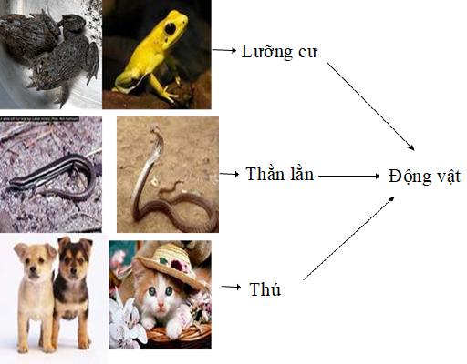 Nhờ có chữ viết con người có thể trừu tượng hóa các sự vật