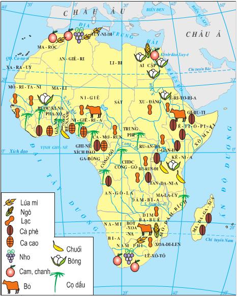 Lược đồ nông nghiệp châu Phi