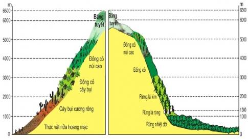 Sơ đồ sườn tây (trái) và sườn đông (phải) của dãy An-đet qua lãnh thổ Pê-ru