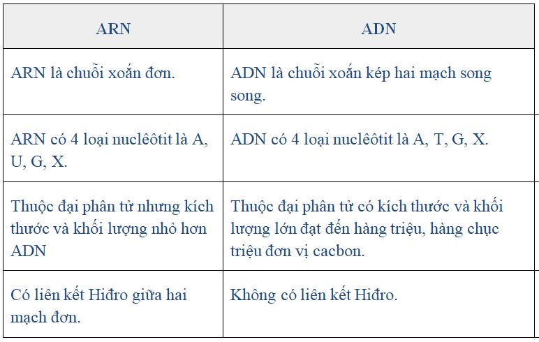 Những điểm khác nhau cơ bản trong cấu trúc ARN và ADN