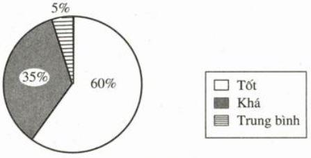 Hình 15: Biểu đồ các loại hạnh kiểm của trường A
